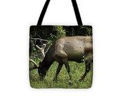 Grassland Grazing Tote Bag