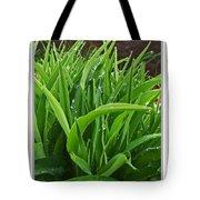 Grassy Drops Tote Bag