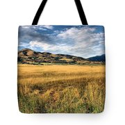 Grassy Plains And Ancient Dunes Tote Bag