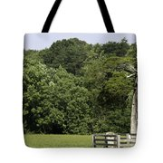Grave Of Lafayette Meeks Appomattox Virginia Tote Bag by Teresa Mucha