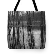 Gray Day Reflections Tote Bag
