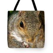 Gray Squirrel Tote Bag