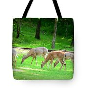 Grazing Doe Tote Bag