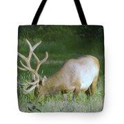 Grazing Elk Tote Bag