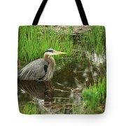 Great Blue Heron At The Marsh Tote Bag