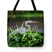 Great Blue Heron Hiding In The Grasses Tote Bag