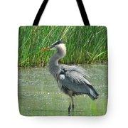 Great Blue Heron Tote Bag by Paul Ward