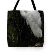 Great Egret 3 Tote Bag