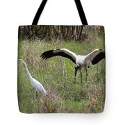 Great Egret And Wood Stork In The Marsh Tote Bag