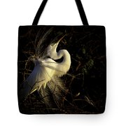Great Egret In Great Light Tote Bag