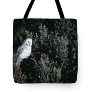 Great Gray Owl Strix Nebulosa In Blonde Tote Bag