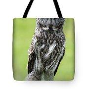 Great Grey Owl, Water Valley, Alberta Tote Bag
