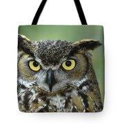 Great Horned Owl Bubo Virginianus Tote Bag