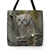 Great Horned Owl Pale Form Kootenays Tote Bag