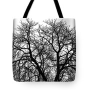 Great Old Tree Tote Bag