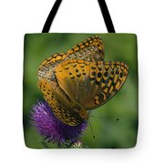 Great Spangled Fritillaries On Thistle Din108 Tote Bag