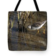Greater Yellowlegs At Spi Tote Bag