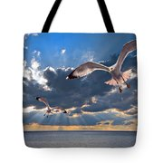 Greek Gulls With Sunbeams Tote Bag by Meirion Matthias