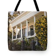 Greek Revival And The Tiny Pink Shoe - Garden District New Orleans Tote Bag