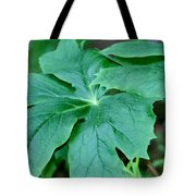 Green Acres Tote Bag