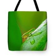 Green And Yellow Bug Tote Bag