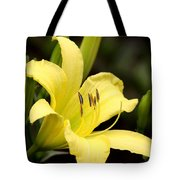 Green And Yellow - Lily Tote Bag