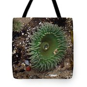 Green Anemone Tote Bag