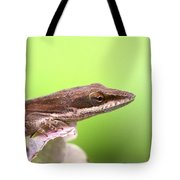 Green Anole In Pastels Tote Bag