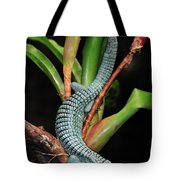 Green Arboreal Alligator Lizard Abronia Tote Bag