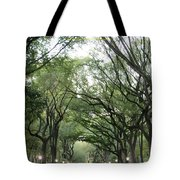 Green Arches  Tote Bag