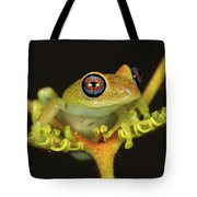 Green Bright-eyed Frog Boophis Viridis Tote Bag
