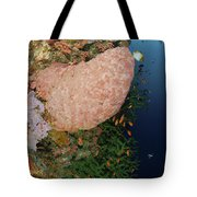 Green Coral With Red Fish And Pink Tote Bag