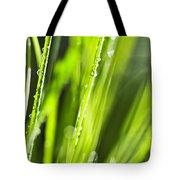 Green Dewy Grass  Tote Bag by Elena Elisseeva