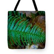 Green Fern Tote Bag