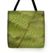 Green Ferns Blend Together Tote Bag