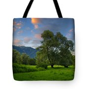 Green Field With Trees Tote Bag