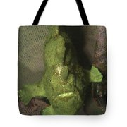 Green Frogfish In Sponge, North Tote Bag by Mathieu Meur