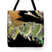 Green Fungi Tote Bag