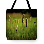 Green Grow The Rushes O Tote Bag