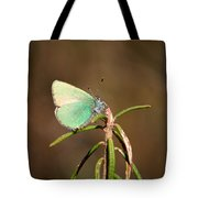 Green Hairstreak Tote Bag