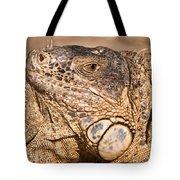 Green Iguana Tote Bag