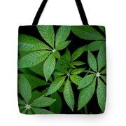 Green Is Beautiful Tote Bag