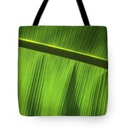 Green Leaf, Close-up Tote Bag