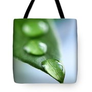 Green Leaf With Water Drops Tote Bag