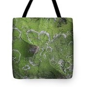 Green Lichened Palm Stalk Tote Bag