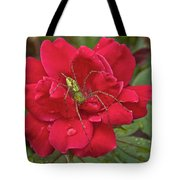Green Lynx Spider 8587 3256 Tote Bag