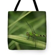 Green On Green Tote Bag