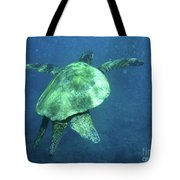 Green Sea Turtle 1 Tote Bag