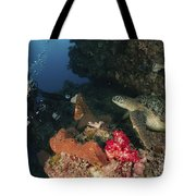 Green Sea Turtle And Underwater Tote Bag