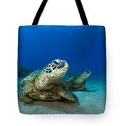 Green Sea Turtle Couple Tote Bag